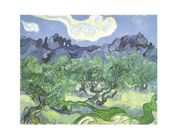The Olive Trees, 1889 by Vincent Van Gogh - print
