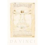 The Vitruvian Man by Leonardo Da Vinci - print