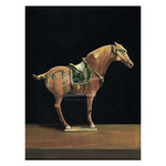 Asian Equus I by Hampton Hall - framed art prints and framed pictures