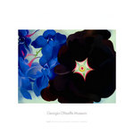 Black Hollyhock Blue Lakespur, 1930 by Georgia O'Keeffe - print