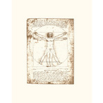 The Vitruvian Man (serigraph and embossed) by Leonardo Da Vinci - print