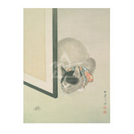 Cat & Spider by Toko Makoto - framed art prints and framed pictures