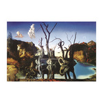 Swans Reflecting Elephants by Salvador Dali - print