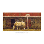 The New Mare by Peter Sculthorpe - print