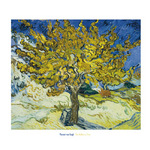 The Mulberry Tree, 1889 by Vincent Van Gogh - print