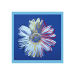 Daisy, c.1982 (blue on blue) by Andy Warhol - print
