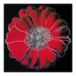 Flower for Tacoma Dome, c. 1982 (black &amp;amp; red) (giclee) by Andy Warhol - print