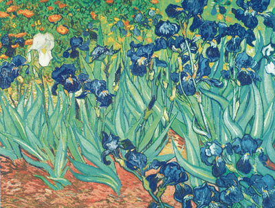 Irises in the Garden Poster Art Print by Vincent Van Gogh