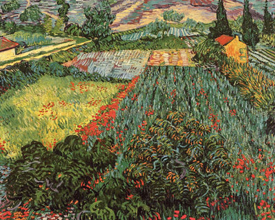 Field of Poppies, Saint-Remy, c. 1889 Poster Art Print by Vincent Van Gogh