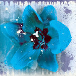 Tulip Fresco blue Poster Art Print by Dale Edwin Murray