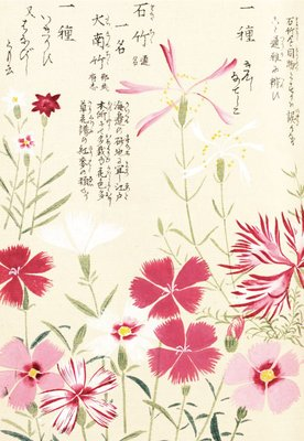 Honzo Zufu [Pinks] botanical print by Kan'en Iwasaki