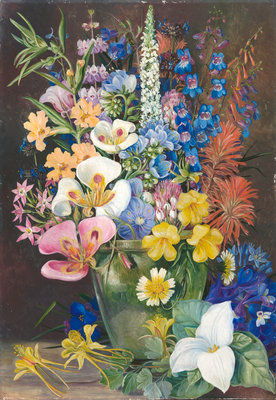 Fine Art Print of 203. Group of Californian Wild Flowers. by Marianne North