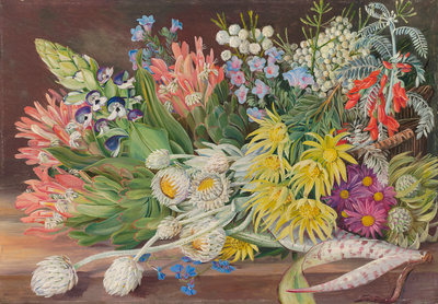 405. A Medley of Flowers from Table Mountain, Cape of Good Hope. botanical print by Marianne North