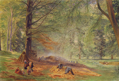 Charcoal Burners in Rokeby Park by Alfred William Hunt - print