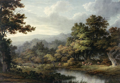 Forest Glade with Pool and Deer by John Glover - print