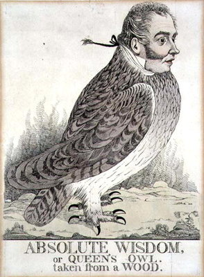 Absolute Wisdom or Queens Owl Taken from a Wood by Richard Dighton - print