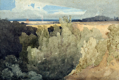 Brignall Banks on the Greta by John Sell Cotman - print
