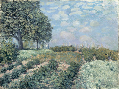 The Market Gardens, 1874 by Alfred Sisley - print