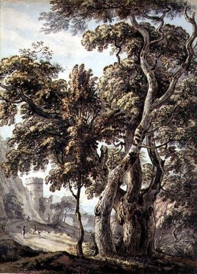 Study of Trees by Thomas Sandby - print