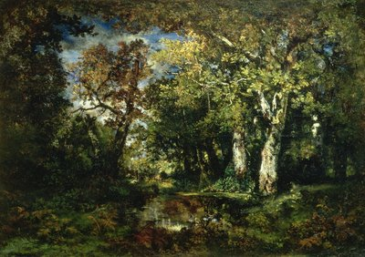 The Forest at Fontainebleau, 1870 by Narcisse Virgile Diaz de la Pena - print