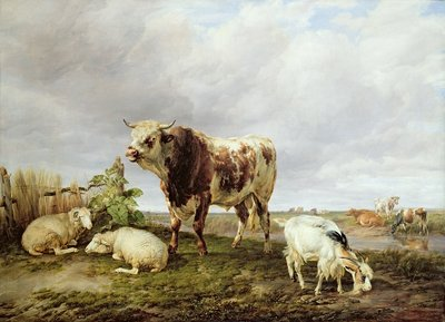Cattle in the Meadow, 1843 by Thomas Sidney Cooper - print