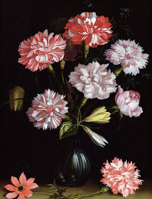 Floral Study: Carnations in a Vase by Balthasar van der Ast - print
