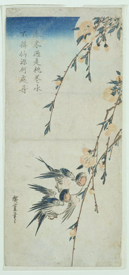 Swallows and Peach Blossom in Moonlight by Ando or Utagawa Hiroshige - print