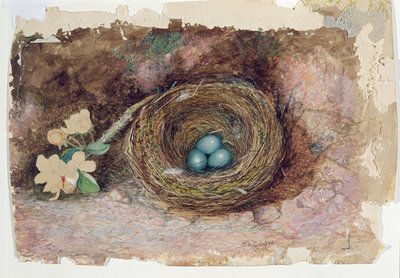 Fine Art Print of Birds Nest, 1863 by John Atkinson Grimshaw