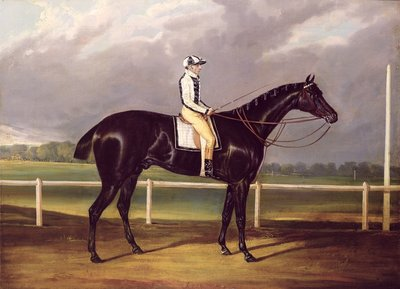 Jerry, Winner of the St. Leger in 1824 by English School - print