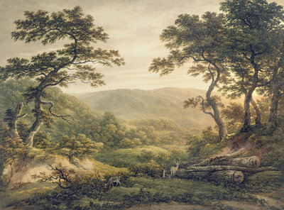 Needlewood Forest, Hampshire by John Glover - print