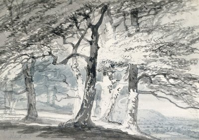 Norbury Park, Surrey by Joseph Mallord William Turner - print