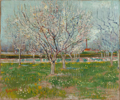 Orchard in Blossom (Plum Trees) Poster Art Print by Vincent Van Gogh