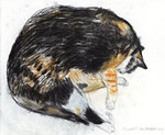 Fine Art Print of Kikko Asleep 2002 by Elizabeth Blackadder