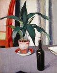 Fine Art Print of Aspidistra and Bottle on Table by Francis Campbell Boileau Cadell