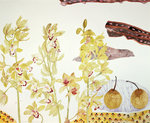 Fine Art Print of Orchids and Pears 1985 by Elizabeth Blackadder
