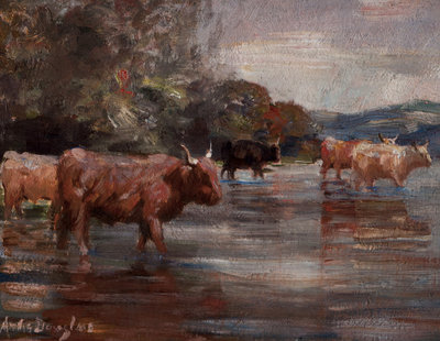 Highland Cattle in a landscape Poster Art Print by Andrew Douglas