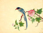 Red-billed blue magpie by John Reeves - print