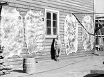 Reindeer skins, Hammerfest, Norway, 1930 by Marine Photo Service - print