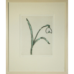 Snowdrop by Richard Spare - art