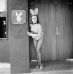 Bunny Girl (small) by Philip Townsend - art