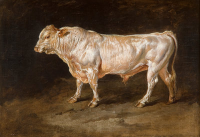 Study of a Bull, 1811 by James Ward - print