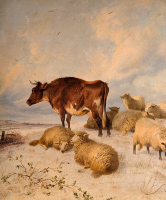 Cows and Sheep in Snowscape, 1864 by Thomas Sydney Cooper - print