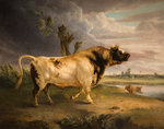 Bull, 19th century by Edmund Bristow - print