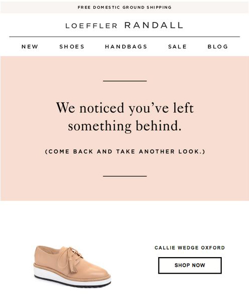 abandoned-cart-email-campaign