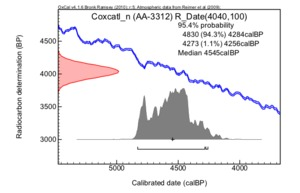 Coxcatl%c3%a1n%20(aa-3312)