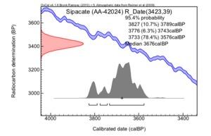 Sipacate%20(aa-42024)