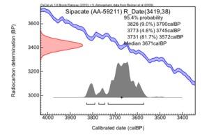 Sipacate%20(aa-59211)