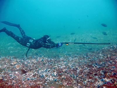 Deep Freedive instructor Brandon Gross