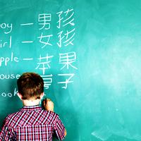 Vantagens e Desvantagens da Educação Bilíngue