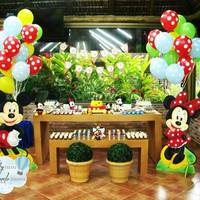 Festa Turma do Mickey.